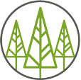 Forest Carpentry and Building Services